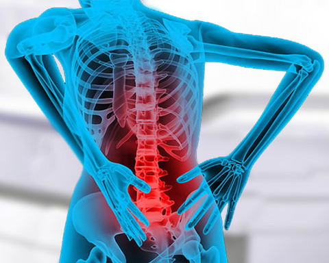 МРТ позвоночника − показания к проведению, особенности процедуры